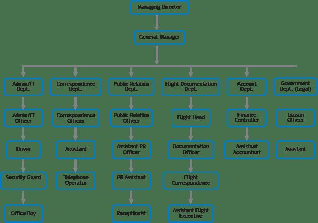 Organizational Chart for Blue Bird Overseas