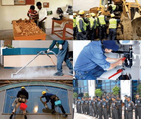 Training Labor Forces